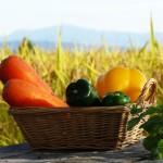 有機無農薬野菜